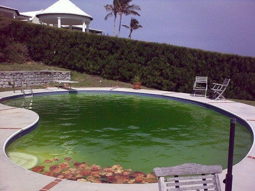 How To Clean Up Your Swimming Pool After A Storm