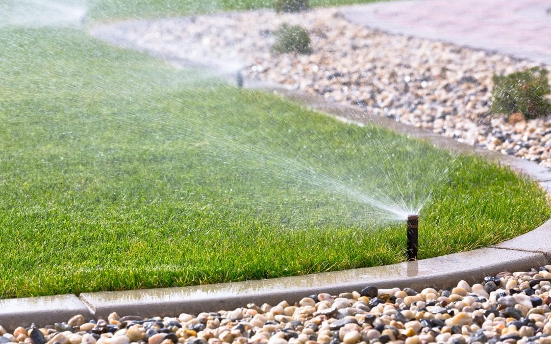 Las Vegas Premier Lawn and Irrigation Service